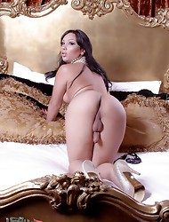 Gorgeous tgirl Holly playing on the bed