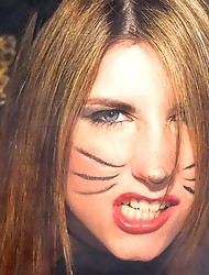 Amy the alley cat